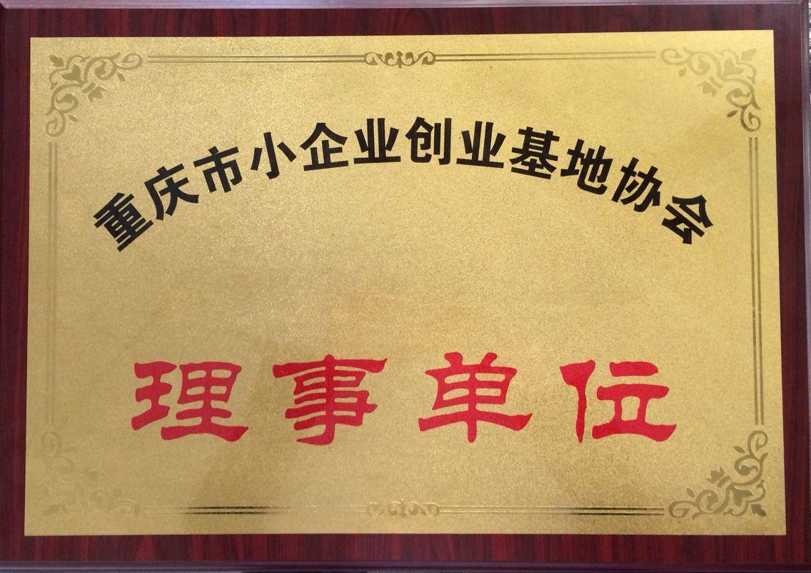 中小企业局创业基地协会理事单位